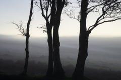 Beautiful foggy sunrise landscape over the tors in Dartmoor reve. Stunning foggy sunrise landscape over the tors in Dartmoor revealing peaks through the mist stock photos