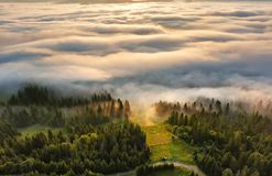 Foggy sunrise in mountains. Sea of fog behind top of the hill royalty free stock image