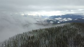 Beautiful foggy winter landscape in the Carpathian mountains with forest covered with snow. Top view stock video footage