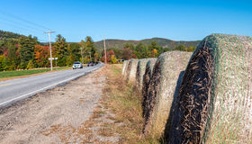 Beautiful foliage colors of New England.  Royalty Free Stock Images