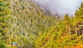 Beautiful foliage colors of New England.  Royalty Free Stock Photo