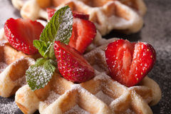 Beautiful food: Belgian waffles with fresh strawberries. Horizon. Beautiful food: Belgian waffles with fresh strawberries and mint macro on the slate table Royalty Free Stock Image