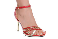 Beautiful foot in sandal. Female leg in red sandal isolated on a white background Stock Photography