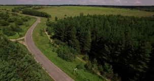 Beautiful forest landscape aerial view. Beautiful forest and country road landscape aerial view on a summer day stock video