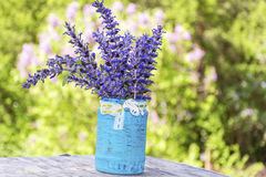 Beautiful forest  flowers in blue vase with ribbon Stock Images