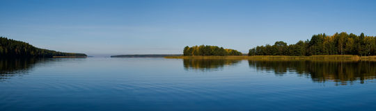 Beautiful forest at the gulf coast. Gulf of Finland Stock Photo