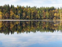 Beautiful forest lake Royalty Free Stock Image