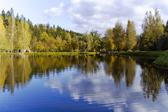 Beautiful forest lake Stock Photo