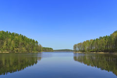 Beautiful forest lake Stock Photos