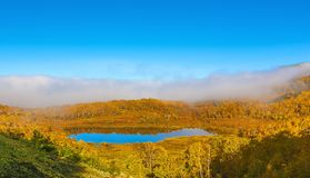 Beautiful forest lake in the autumn day. Stock Photography