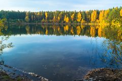 Beautiful forest lake old quarry on a clear autumn day. Forest gave royalty free stock photos