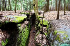 Free Beautiful Forest Landscape With The Big Green Mossy Canyon On The Ledges Pass In Cuyahoga Valley Near Cleveland, Ohio, USA Royalty Free Stock Photos - 126920828