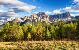 Beautiful forest mountain landscape in Alps Stock Photography