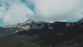 Beautiful Forest and Mountains. Aerial View. Flying over the beautiful mountain and forest. Aerial camera shot