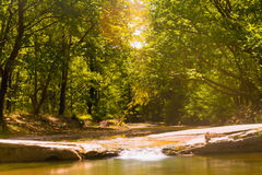Beautiful forest at Prokopi village in Euboea in Greece with Kireas river running through. Stock Photography