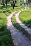 Beautiful forest road Royalty Free Stock Photography