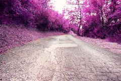 Beautiful forest road in pink colors. Mysterious street in the mountains in pink colors royalty free stock images