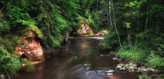 Beautiful forest on rocky river. Beautiful nature park on the rocky Amata river in Latvia. This is a green and clean forest with a tourist trail. Here is a good Stock Images