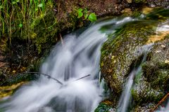 Beautiful forest stream, fast water flow royalty free stock image