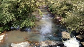 Beautiful forest stream in north america. Beautiful brook in this natural park in north america stock photos