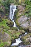 Beautiful forest waterfall Stock Photography