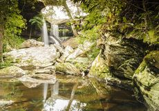 Beautiful forest waterfall and reflections with water. Stock Photography