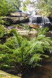 Beautiful forest waterfall in spring season. Royalty Free Stock Images