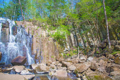 Beautiful forest waterfall. on the stony slope runs stormy forest waterfall. Royalty Free Stock Images