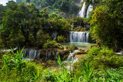 Beautiful forest waterfall Stock Photos