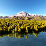 Beautiful forested island Stock Images