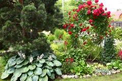 Beautiful formal garden close up photo Royalty Free Stock Photo