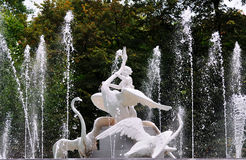 Beautiful fountain. Decorated with a sculpture - a boy and a swans in Lvov, Ukraine Stock Image