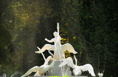 Beautiful fountain. Decorated with a sculpture - a boy and a swans in Lvov, Ukraine Stock Photo