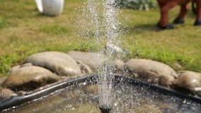 Beautiful fountain vintage style in the garden stock footage