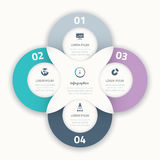 Beautiful four infographic  circle business option element Stock Photography