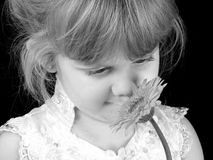 Beautiful Four Year Old Girl Smelling Flower Against Black Background stock photo