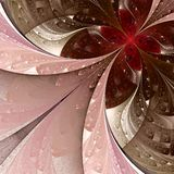 Beautiful fractal flower in beige, brown and pink. Stock Photos