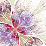 Beautiful fractal flower in beige, violet and red. Royalty Free Stock Photo