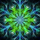 Beautiful fractal flower in black, blue and green. Computer gene Stock Images