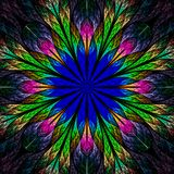 Beautiful fractal flower in blue, green and red. Computer genera Stock Photography