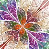 Beautiful fractal flower or butterfly in stained glass window st Royalty Free Stock Photography