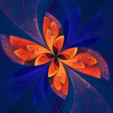 Beautiful fractal flower in dark blue and orange. Royalty Free Stock Image