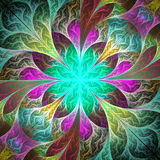 Beautiful fractal flower. Element of design. Artwork for creativ Royalty Free Stock Image