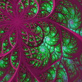 Beautiful fractal flower in green and vinous. Computer generated Royalty Free Stock Images