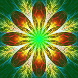 Beautiful fractal flower in green and yellow. Computer generated Royalty Free Stock Photography