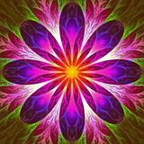 Beautiful fractal flower in pink, red and yellow. Computer gener Stock Photography