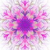 Beautiful fractal flower in purple and pink. Computer generated Royalty Free Stock Photos