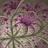 Beautiful fractal flower in vinous and gray. Stock Photography