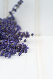 Beautiful fragrant lavender bunch in rustic home styled setting Royalty Free Stock Photo