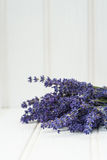 Beautiful fragrant lavender bunch in rustic home styled setting Stock Photography